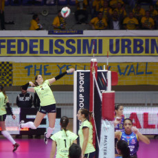 volley robur-1
