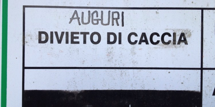 Auguri_caccia