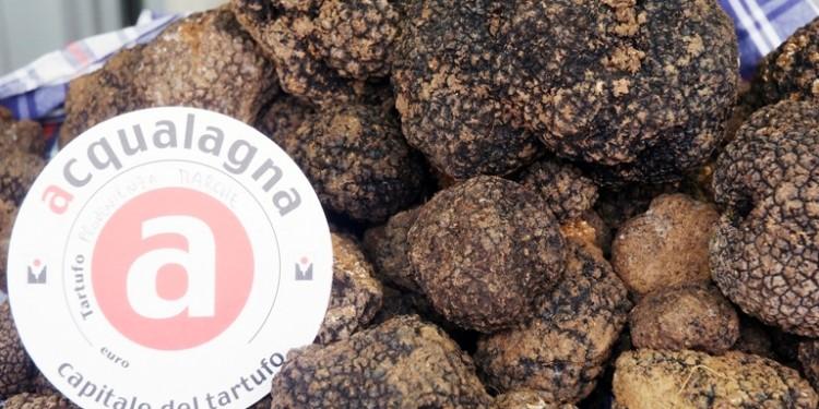 tartufo-nero-di-acqualagna