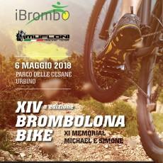 brombolona bike 2018-03-06XIVBBVolantino01